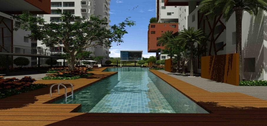 K S Ranganath_Osian chlorophyll_swimming pool View 2_27.11.1.jpg